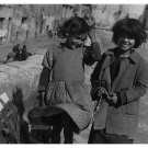 avignon-1951