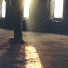 autumn-light-in-cellarium