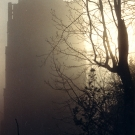 hubys-tower-in-mist
