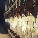 s-wall-of-presbytery