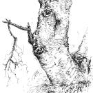 tree-4_0