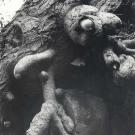 prehistoric-bird-in-fallen-tree